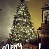 Remembering Christ this Christmas Season